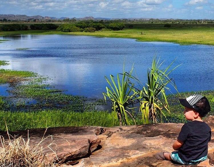 Top End Wetlands, Northern Territory