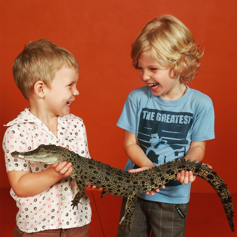 THE BEST THINGS TO DO IN DARWIN WITH KIDS