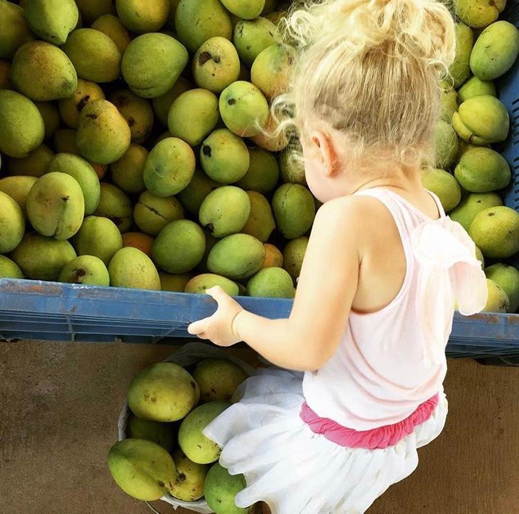 Little girl with mangos, Rapid Creek Markets in Darwin