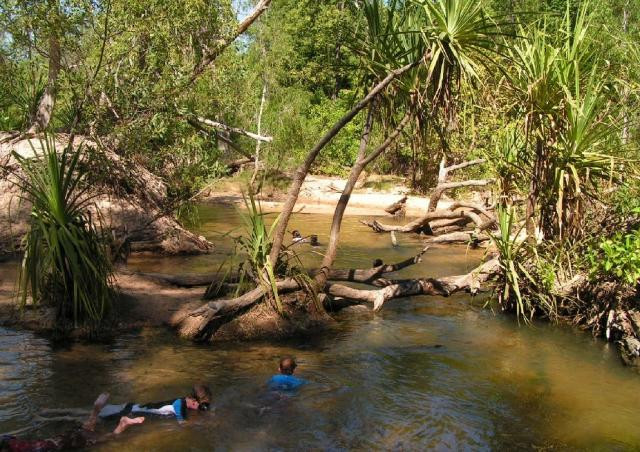 Douglas Daly Hot Springs, Northern Territory