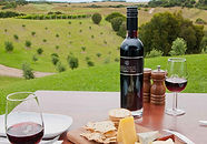 Winery and sight seeing tours