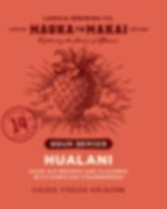 16-LBC-02_M2M_Hualani_MECH.jpg