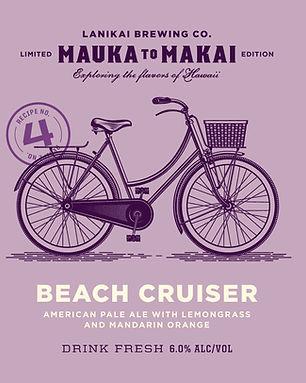 17-LBC-01_M2M_Beach-Cruiser_MECH.jpg