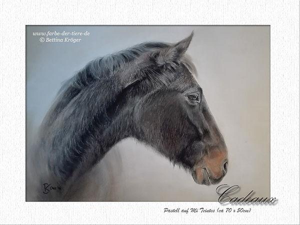 """Pferdebild, Tierportrait von """"Cadeaux"""""""