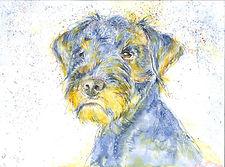 Hundezeichung, bunter Terrier in Aquarell-Mixed-Media Technik