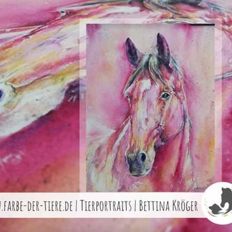 Jack   The Pretty in Pink   Pferdezeichnung in Aquarell-Mischtechnik