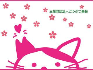 22日は猫の日!?さくら猫TNR活動に協力♪