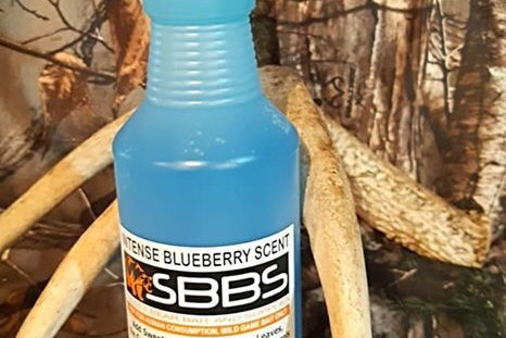 Intense Blueberry Scent 1L