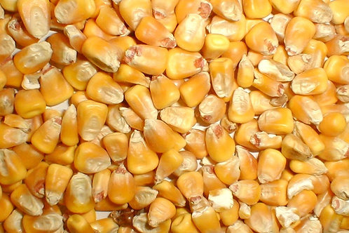 AlphaBuck Corn 25kg
