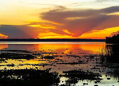 PAMPAMLucina_Pôr-do-sol_no_Pantanal.jpg