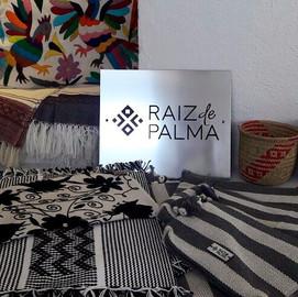 Raíz de Palma