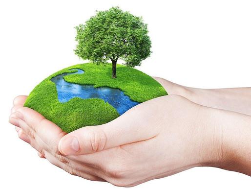 World Environment Day - Saturday 5th June