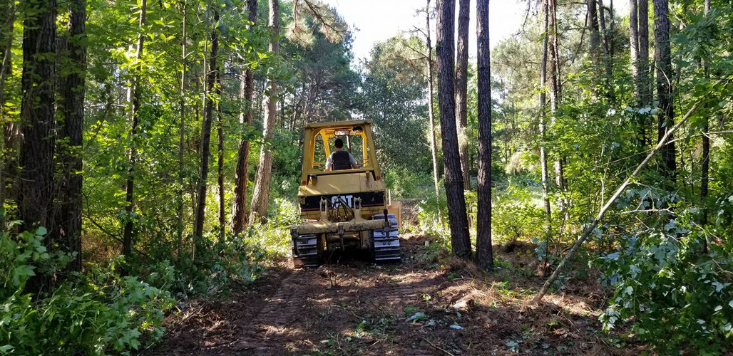fenceline clearing with bulldozer