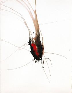 ap2007_11