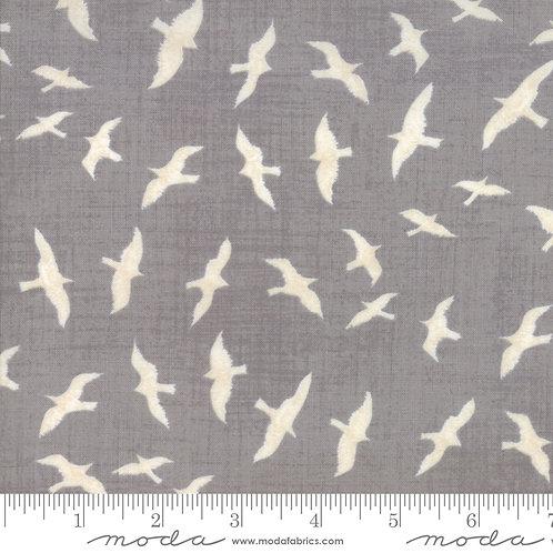 Ahoy Me Hearties: Sea-gulls (Pebble grey) - Janet Clare