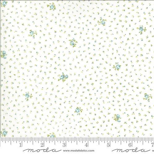 Dover 18702-13 - Brenda Riddle (Moda Fabrics)