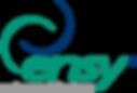 Ensy_logo.png