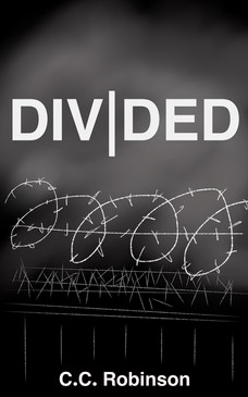 Divided series