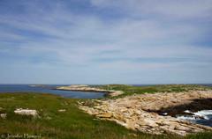 Seal Island, Maine