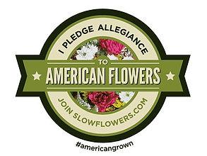 slow flowers 2.jpg