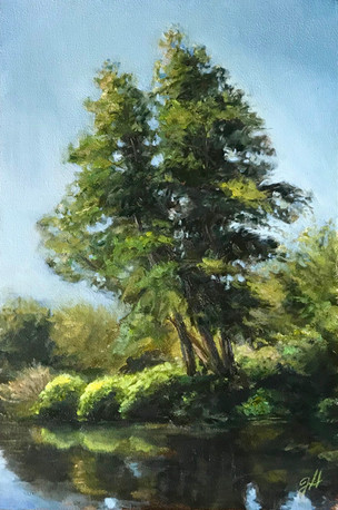 Trees by the River Bille