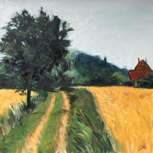 """""""Farmers Field"""""""