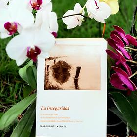 la_inseguridad.png