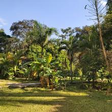 Hermosos jardines