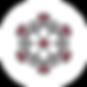 icone-coronavirus.png