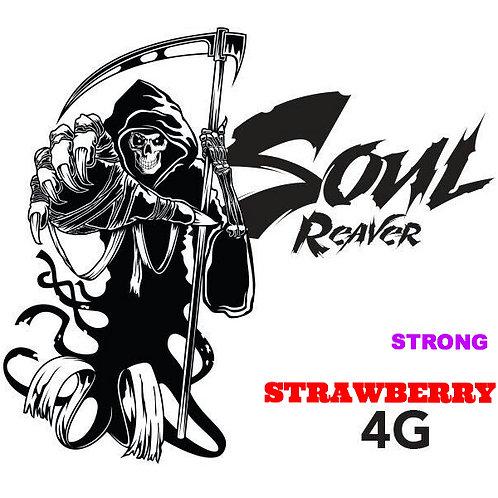 STRAWBERRY (S)