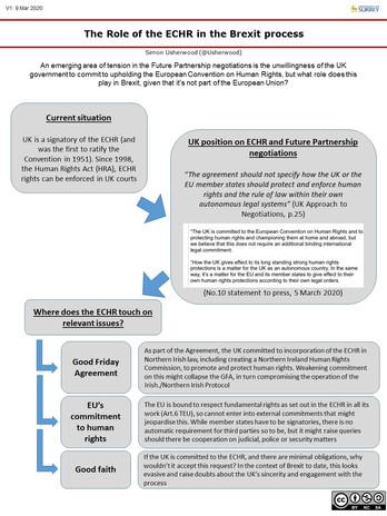 ECHR Role.jpg