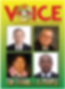 2011 voice cover.jpg