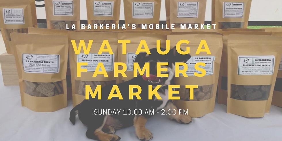 Watauga Farmers Market (Superbowl Sunday)