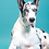 Thumbnail: XLARGE DOG TREATS (QTY 50)