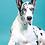 Thumbnail: XLARGE DOG TREATS (QTY 30)