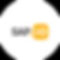 Logo SAP io