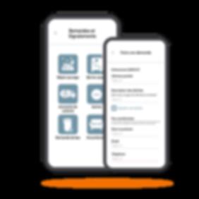 App-Demandes-signalements.png