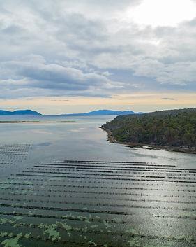 Blackman Bay - aerial.jpg