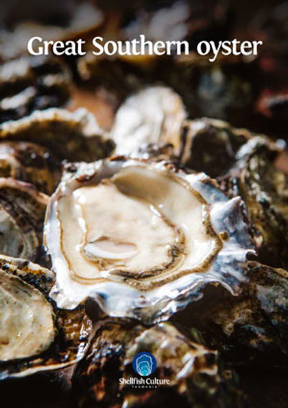 SCUL12254_Great-Southern-Oyster_Fact-She