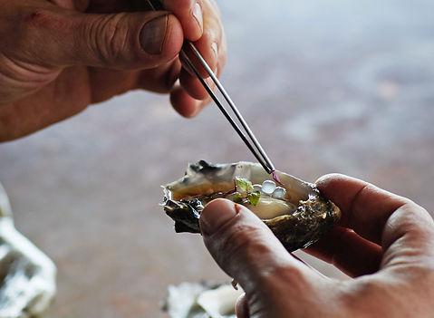 hands-dressing-oyster-with-tweezers.jpg
