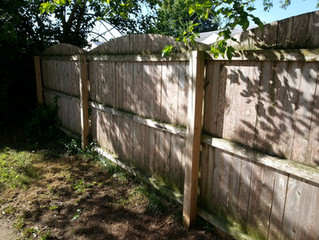 Is Your Deck, Fence, or Gazebo Beginning to Look a Bit Rough? Battlecat Can Help!
