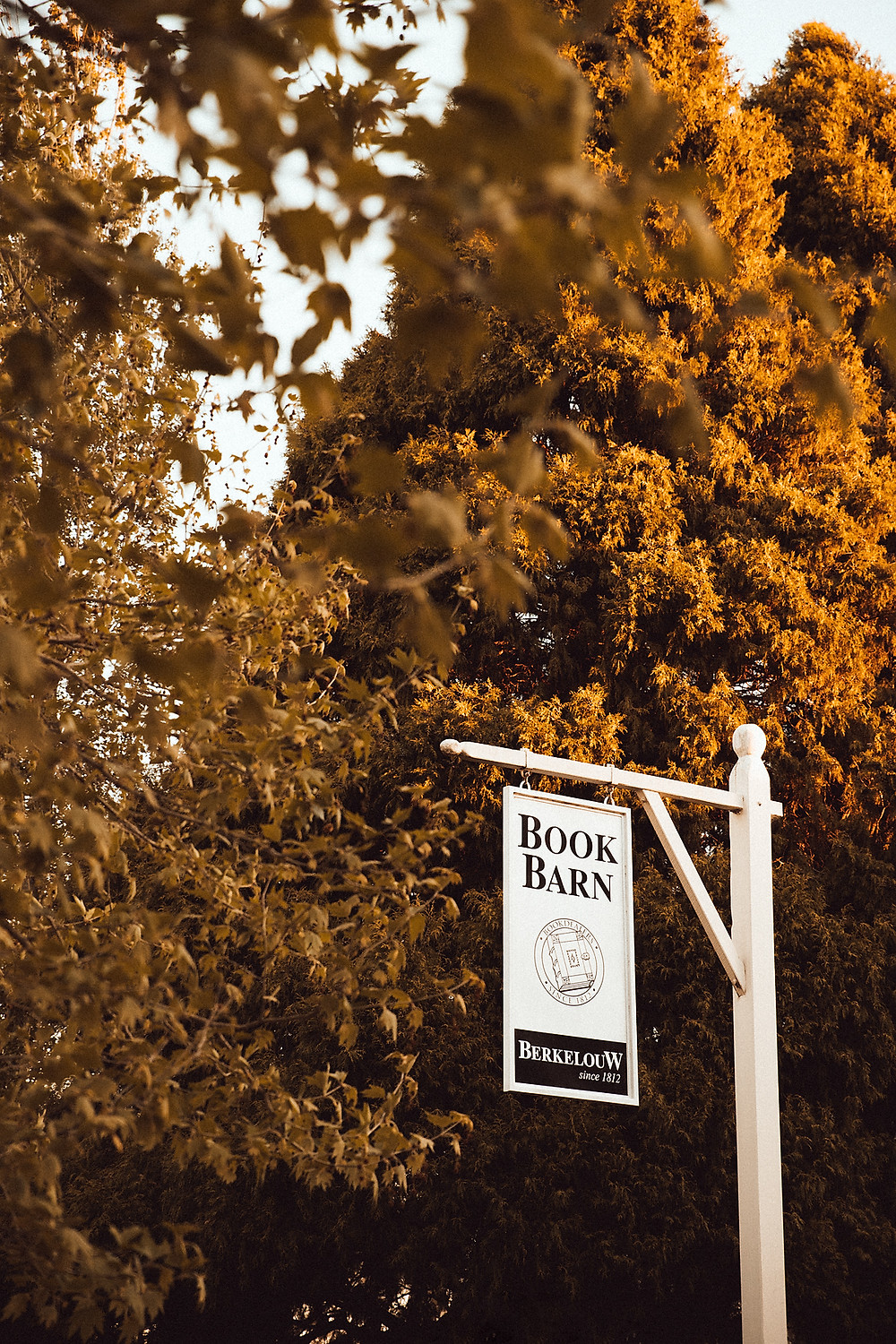 the book barn bendooley estate wedding