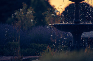 professional wedding photography waldara farm fountain at sunset