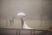 Bride and groom standing on a pier under umbrella with horse in background