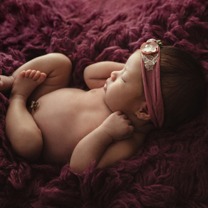 Clementine's Professional Newborn Photography Session