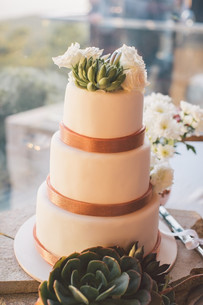 wedding cake with succulents professional wedding photography