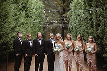seclusions wedding photographer blue mountains