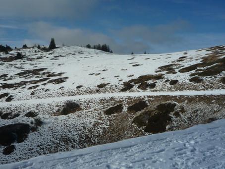 la Montagne de Lure en hiver