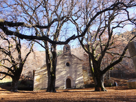 l 'Ermite de Notre Dame de Lure