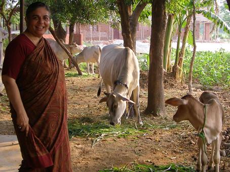 Vandana Shiva à la foire Bio Genepi